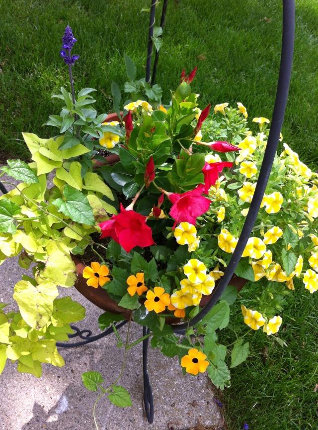 Trinas Flowers 1
